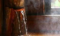 [お一人5,980円]歴史深い橙色に輝く秘湯でリフレッシュ≪和室/滝見露天風呂/鍋料理・蒸し物など/1泊2食付≫ @明治温泉旅館