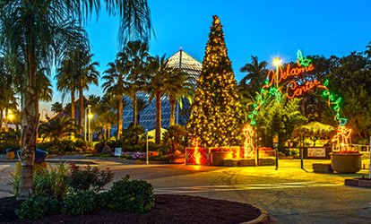 image for Admission for Two, Four, or Six to Festival of Lights and the DaVinci Exhibit at Moody Gardens (Up to 56% Off)