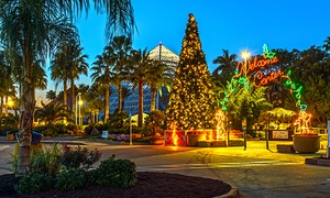 Up to 44% Off Festival of Lights and the DaVinci Exhibit at Moody Gardens, plus 6.0% Cash Back from Ebates.