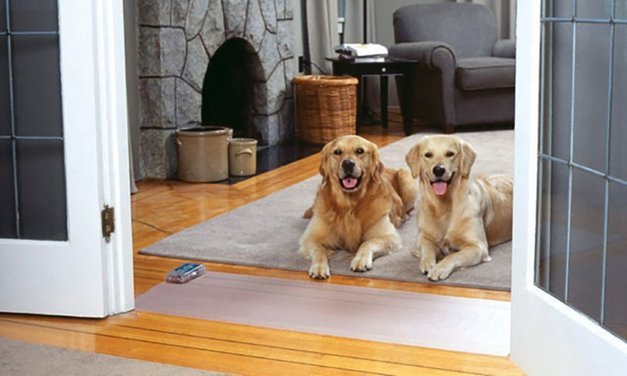 Image result for pet proofing