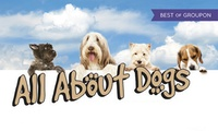 All About Dogs Show, Two or Four Tickets, 16 or 17 April (Up to 55% Off)