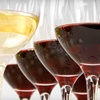 Up to 60% Off Wine Workshop at Oak Mountain Winery