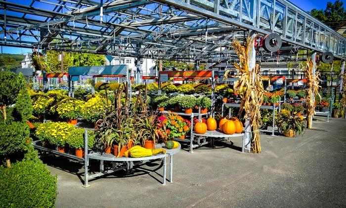 Orange Garden Center - City Of Orange: $15 for $30 Worth of Mums, Pumpkins, and Fall Garden Supplies at Orange Garden Center