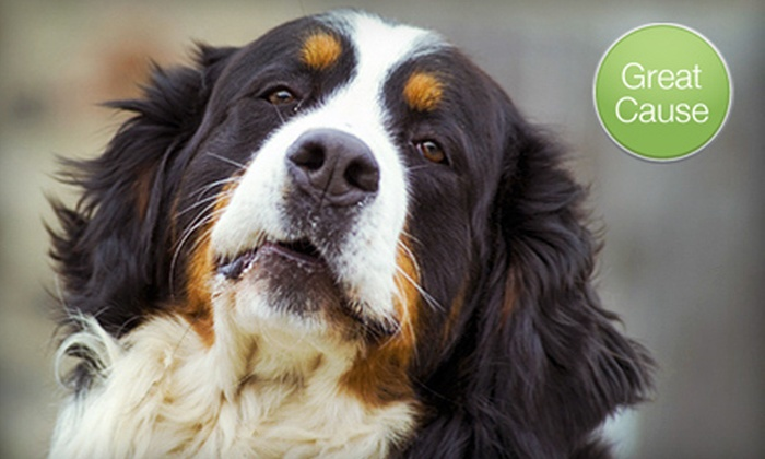 Project Pawsitive Foundation: $10 Donation to Help Restore an Animal Shelter
