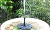 Solar-Powered Fountain Pump Kit