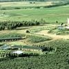 Hunter Valley: Vineyard Getaway with Tour