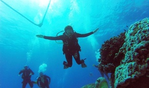 Scuba Shane Diving: Three-Day Open Water Scuba Diving Course for One ($369) or Two People ($735) from Scuba Shane Diving (Up to $1200 Value)