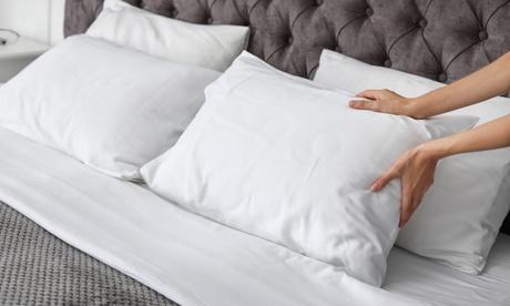 Conjuntos de 2 o 4 almohadas de copos viscocomfort