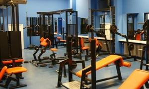 Koloseum Gym & Fitness: Karnet na siłownię: miesięczny za 59,99 zł i więcej opcji w Koloseum Gym & Fitness (do -41%)