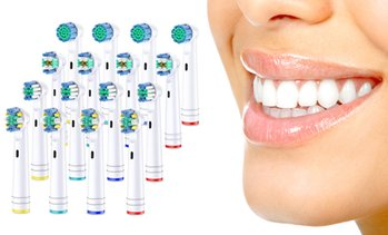 16 or 32 Oral-B-Compatible Brush Heads