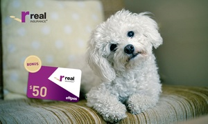 Real Pet Insurance: Insure Your Pet with Real Pet Insurance Online and Get a $50 EFTPOS Gift Card