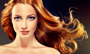 Blooms Hair: Cut and Blow-Dry with Half Head of Highlights at Blooms Hair (68% Off)