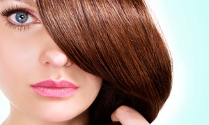 Color Bar 51: One or Three Haircuts with Optional Partial Highlights or Singe-Process Color at Color Bar 51 (Up to 63% Off)