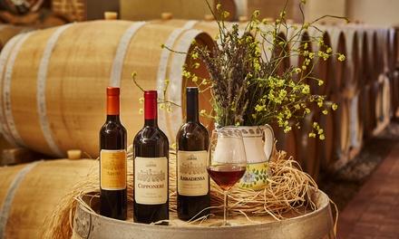 Degustazione vini più cena