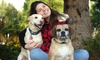 LGS Photography - Bellevue: 75-Minute Pet Photo Shoot with Retouched Digital Images from LGS Photography (46% Off)