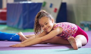 Tumble Wee & Dance: Week-Long Kids' Tumbling or Gymnastics Camps for One or Two Children from Tumble Wee & Dance (Up to 55% Off)