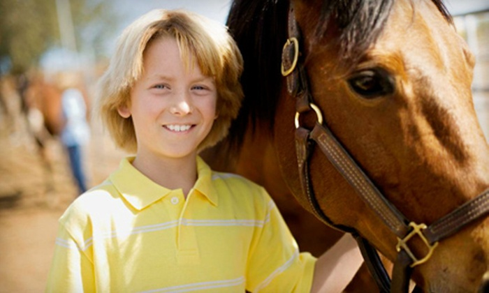 Chase Farms - Hollis: Intro to Horseback Riding, Four-Class Package, or Guided Tour for Five from Chase Farms in Hollis (Up to 62% Off)