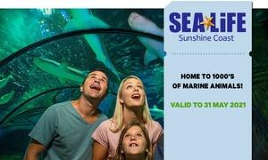 SEA LIFE Sunshine Coast Entry