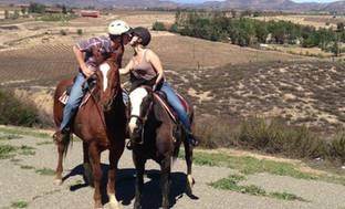 Temecula Horseback Riding Wine Tours Groupon