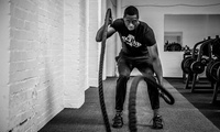 10 or 20 Gym Day Passes at Iron Squad Gym (80% Off)