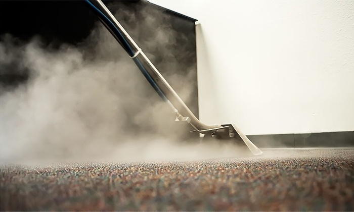 Image result for carpet steam cleaning