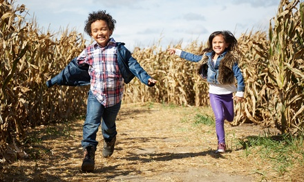 Corn Maze Admission for Two or Four with Add-Ons at Rosedale Farms and Vineyards, Through Nov 2 (Up to 41% Off)