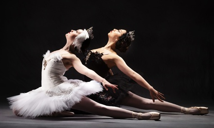 black swan psychology essay The black swan is a kind of movie that has been portrayed by nina sayers who was also known as natalie portman she really wanted this lead role especially in.