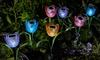 Tulpen met led-verlichting