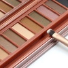 Bliss & Grace 12-Color Professional Eye-Shadow Palette with Brush