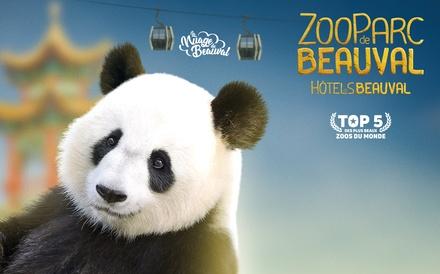 1 entrée 1 jour, adulte ou enfant, du 10 septembre 2019 au 27 mars 2020 à 22,50 € au ZooParc de Beauval