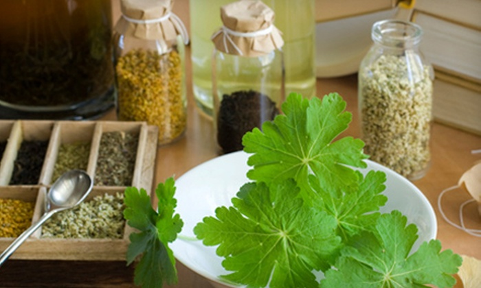 Erin's Meadow Herb Farm - 5: One or Two Herbal Demo Classes at Erin's Meadow Herb Farm (Up to 62% Off)