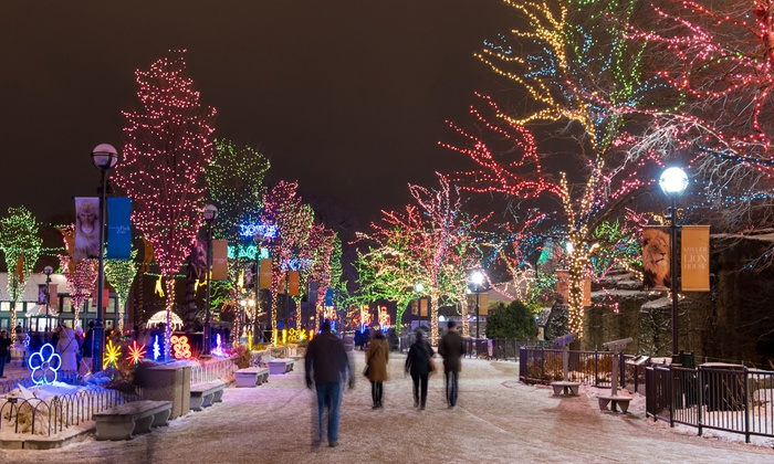 Up to 66% Off Ticket to Chicago Holiday Lights X-Mas Tour - Chicago Holiday X-Mas Shuttle Tour In - Chicago, IL Groupon