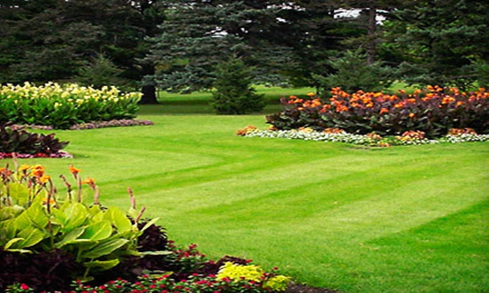 Tree-Tech - North Jersey: One or Two Weed-and-Feed Lawn Treatments for a Quarter or Half Acre from Tree-Tech (Up to 67% Off)