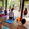 Goa: 3-, 5- or 7-Night Yoga Retreat