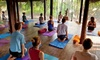 Goa: 3-, 5- or 7-Night Yoga Retreat
