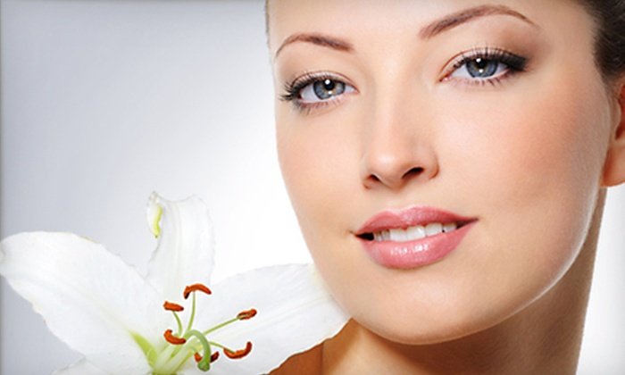 Maral Day Spa - Cherry Creek: One or Three Microdermabrasion Treatments at Maral Day Spa (Up to 65% Off)