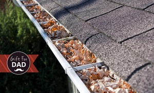 Merchant Name Override (Merchant Content): $125 for a Gutter Cleaning Service for a Single-Storey Home from The Local Gardener (Up to $250 Value)