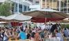 33% Off IPA Beer Festival at Tysons Biergarten
