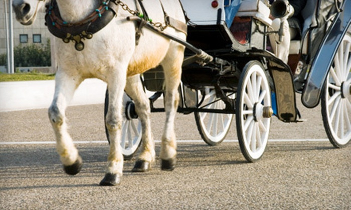 Denver's Fairytale Carriage Rides - Brighton: $75 for Two Horse-Drawn Carriage Rides with Petting-Zoo Access from Denver's Fairytale Carriage Rides ($185 Value)