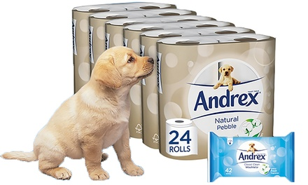 Up to 96 rolls of Andrex Natural Pebbles from £9.98 With Up to 3 Packs of Andrex Washletsfrom £12.98