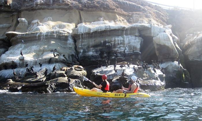 Sea Life & Caves Kayak Tours