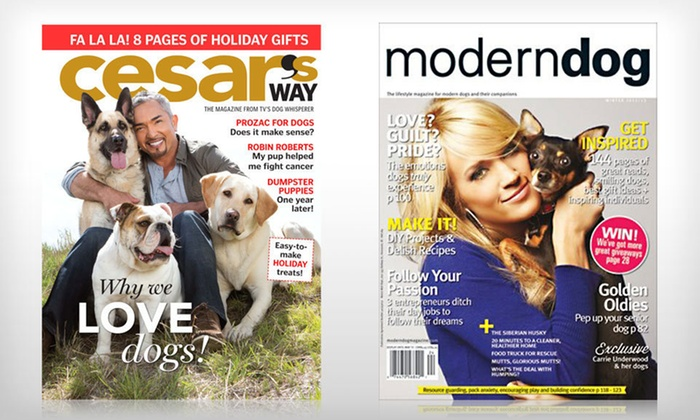 "Dog-Lover Magazine Subscriptions: One-Year Subscription to ""Modern Dog"" or One- or Two-Year Subscription to ""Cesar's Way"" (Up to 53% Off). Free Shipping."