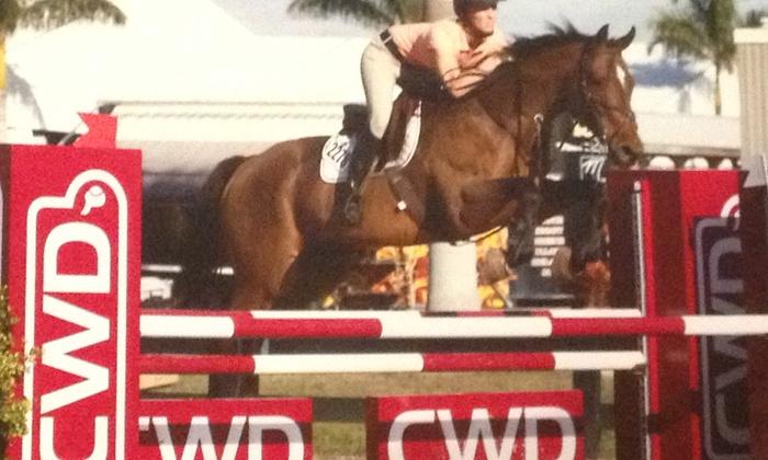 Shelby Oaks Farm - Wilsonville: $28 for $50 Worth of Horseback Riding — Shelby Oaks Farm