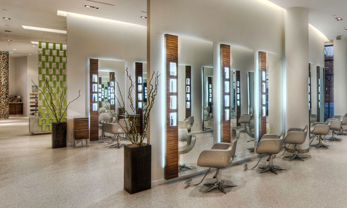 Asha salon spa chicagoland up to 37 off chicago il for Above all grand salon