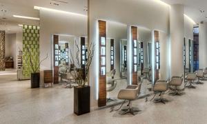 Asha Salon Spa - Chicagoland: Aveda Sensory Ritual Massage, Facial, or Express Mani-Pedi at Asha SalonSpa (Up to 38% Off)