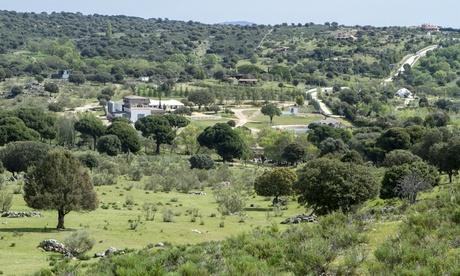 Visita a ganadería para 2, 4 o 6 personas con parrillada ilimitada, postre y bebida desde 29,95 € en Finca Molina