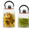 Glass Canister Set (3-Piece)