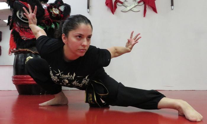 Xiaolin Martial Arts - Bulls Head: Six Weeks of Unlimited Martial Arts Classes at Xiaolin Martial Arts (72% Off)