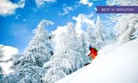 Forfait dune journée de ski au choix pour 1 personne dès 19,90 € à la station de ski Les Karellis