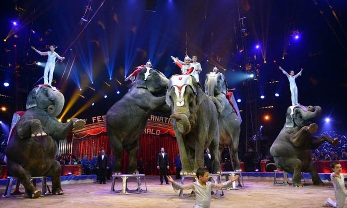 """Circo Gottani - Circo Gottani: Entrada a """"El Circo Gottani"""" del 23 de diciembre al 5 de marzo por 6,95 €"""
